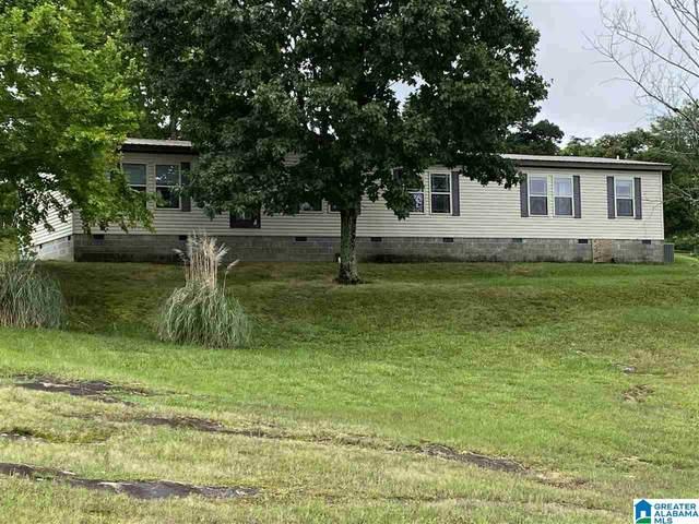 1145 Sawyer Mountain Road, Oneonta, AL 35121 (MLS #1289637) :: LIST Birmingham