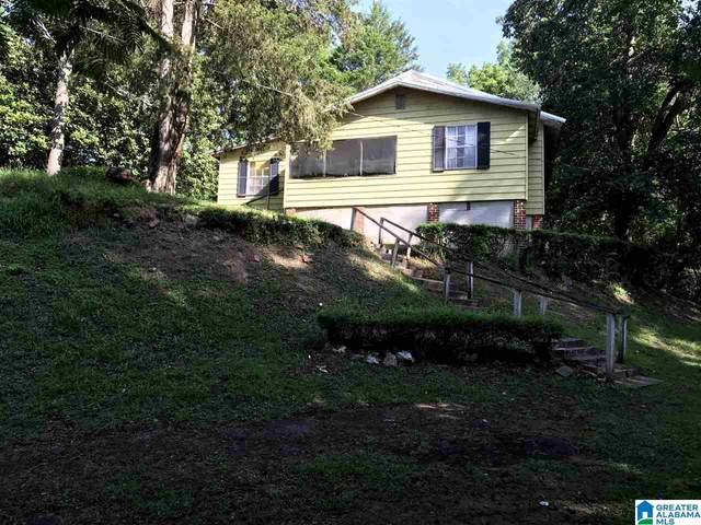 40 Western Drive, Montevallo, AL 35115 (MLS #1289831) :: EXIT Magic City Realty