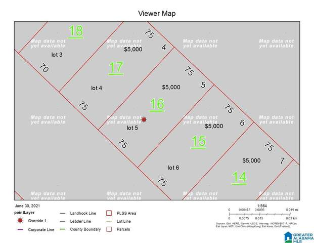 0 Parkway #5, Talladega, AL 35160 (MLS #1290572) :: Kellie Drozdowicz Group