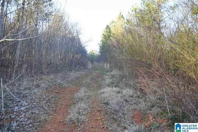 0 County Road 107 #1, Delta, AL 36258 (MLS #1290584) :: Josh Vernon Group