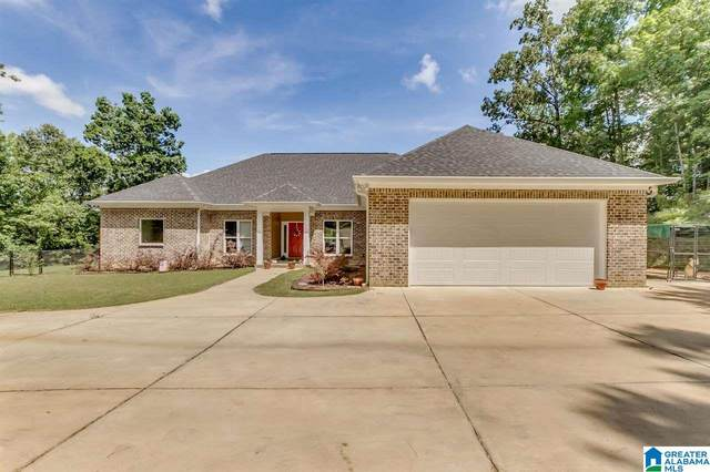 11985 Mcpherson Landing Road, Tuscaloosa, AL 35405 (MLS #1290873) :: EXIT Magic City Realty