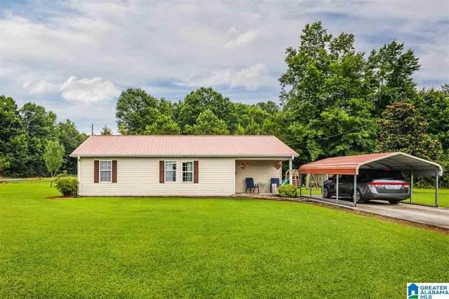 8433 Highway 132, Altoona, AL 35952 (MLS #1290934) :: Lux Home Group