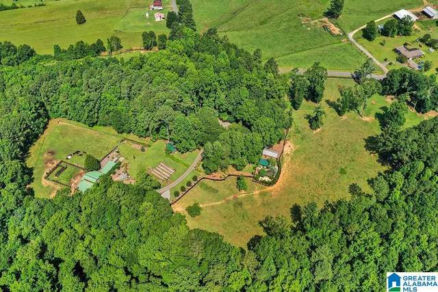1675 Canoe Creek Road, Springville, AL 35146 (MLS #1291709) :: LocAL Realty