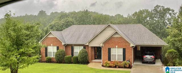 815 Mountain View Drive, Oneonta, AL 35121 (MLS #1291850) :: The Fred Smith Group   RealtySouth