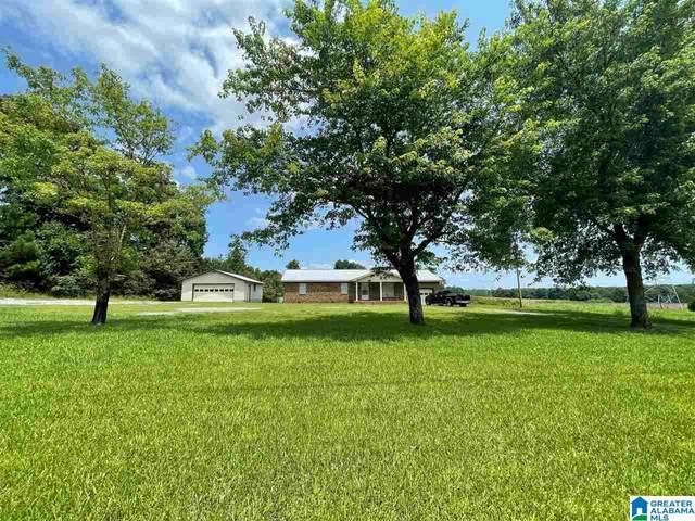1088 County Road 1651, Holly Pond, AL 35058 (MLS #1291908) :: Josh Vernon Group