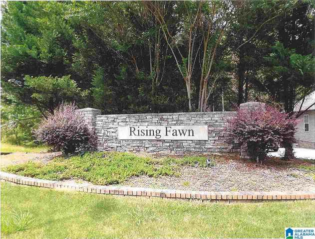 10300 Rising Fawn Circle 10300/10382/165, Warrior, AL 35180 (MLS #1292230) :: Josh Vernon Group