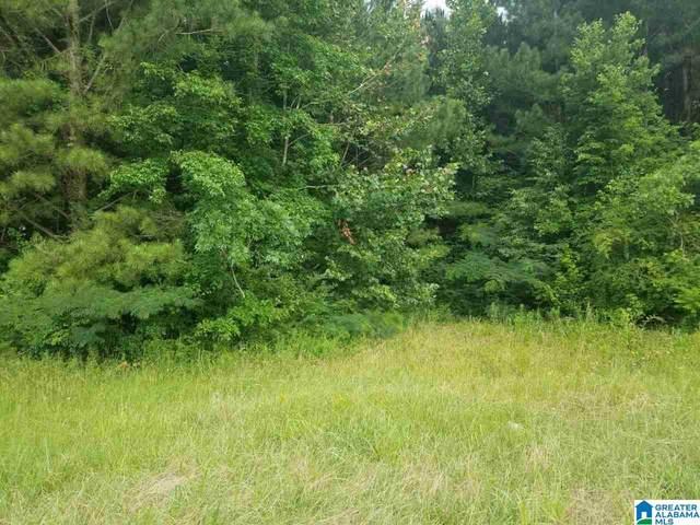 0 Highway 75 12 Acres, Altoona, AL 35952 (MLS #1292391) :: Sargent McDonald Team