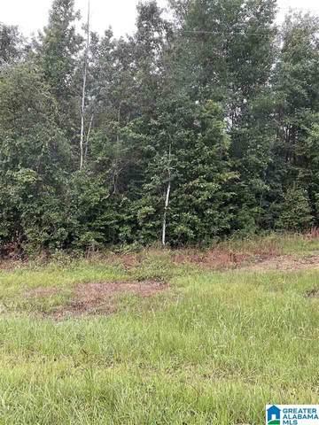 0 County Road 29 23.06 Acres, Maplesville, AL 36750 (MLS #1292439) :: LIST Birmingham