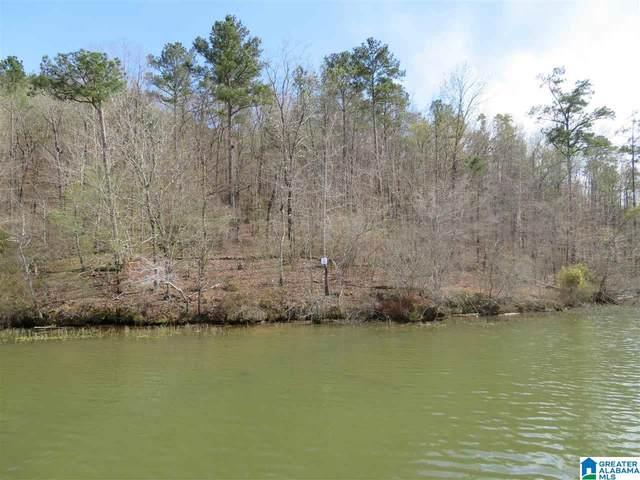 Lot 20 Eagle Point Trace #20, Rockford, AL 35136 (MLS #1292460) :: Josh Vernon Group