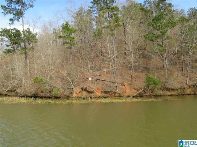 Lot 22 Eagle Point Trace #22, Rockford, AL 35136 (MLS #1292526) :: Josh Vernon Group