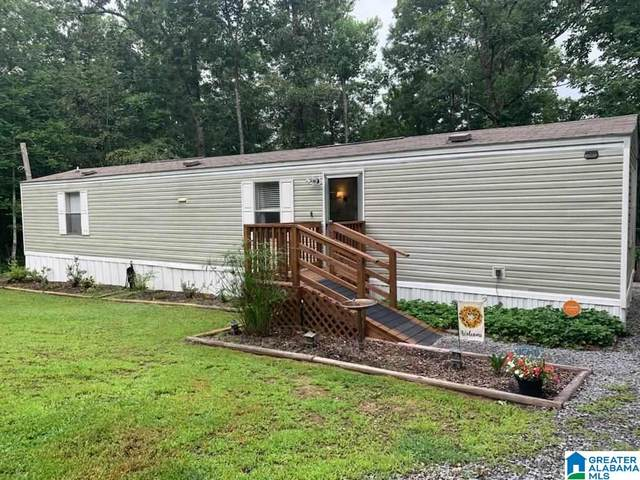 393 Holliday Drive, Oneonta, AL 35121 (MLS #1292564) :: Bailey Real Estate Group