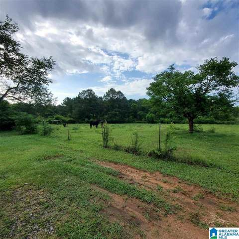 85 Ray's Loop None, Sylacauga, AL 35150 (MLS #1292655) :: The Fred Smith Group | RealtySouth