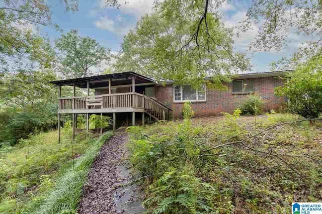 9324 Dads Hill Road, Warrior, AL 35180 (MLS #1292773) :: Josh Vernon Group