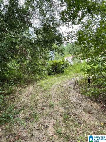 1434 County Road 438 Na, Verbena, AL 36091 (MLS #1292869) :: LIST Birmingham