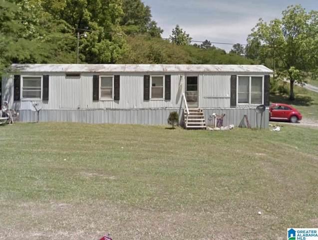 5522 Mud Creek Road, Adger, AL 35006 (MLS #1292928) :: LocAL Realty
