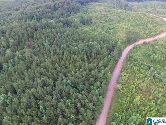 County Road 99 63 Acres, Wedowee, AL 36278 (MLS #1293081) :: LIST Birmingham