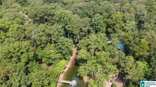 0 County Road 168 #10, Crane Hill, AL 35053 (MLS #1293444) :: Josh Vernon Group