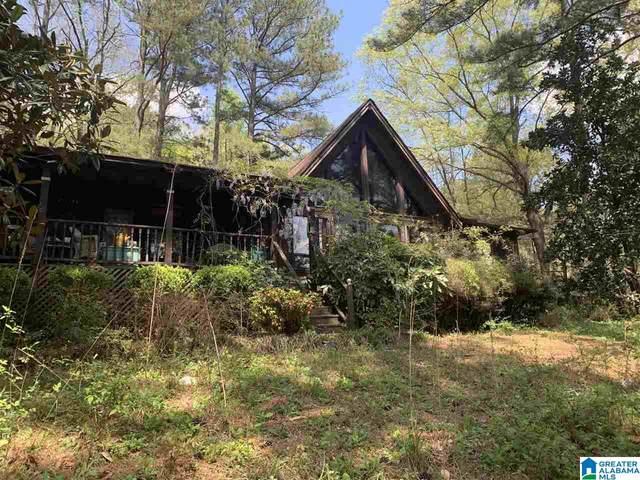105 Jones Circle, Springville, AL 35146 (MLS #1293460) :: LocAL Realty