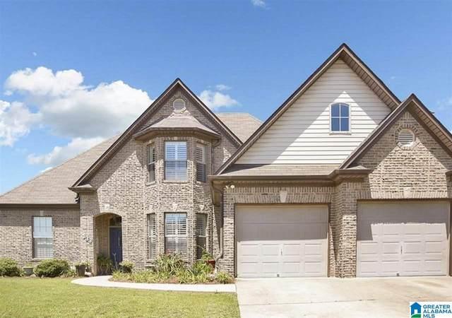 133 Oakwell Street, Calera, AL 35040 (MLS #1293486) :: Bailey Real Estate Group