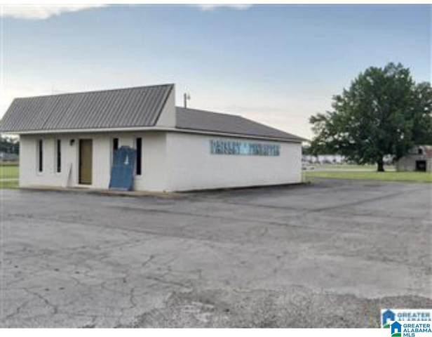 155 Medical Street, Altoona, AL 35952 (MLS #1293869) :: Sargent McDonald Team