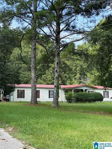 273 Sellers Road, Ashville, AL 35953 (MLS #1293903) :: Sargent McDonald Team