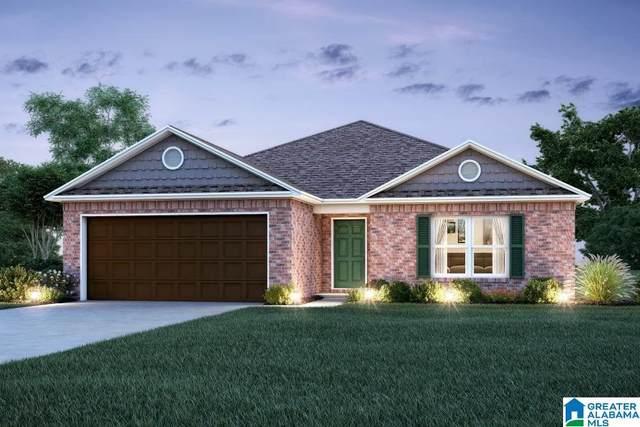 1049 Brookhaven Drive, Odenville, AL 35120 (MLS #1294113) :: Josh Vernon Group