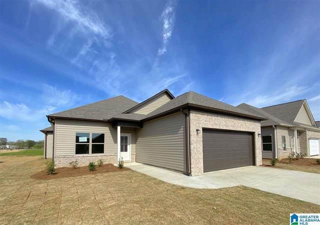 14208 Sugarberry Lane, Tuscaloosa, AL 35405 (MLS #1294123) :: Josh Vernon Group