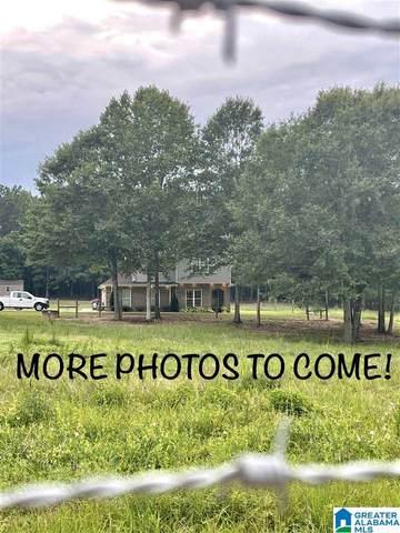 2884 County Road 77, Clanton, AL 35045 (MLS #1294214) :: JWRE Powered by JPAR Coast & County