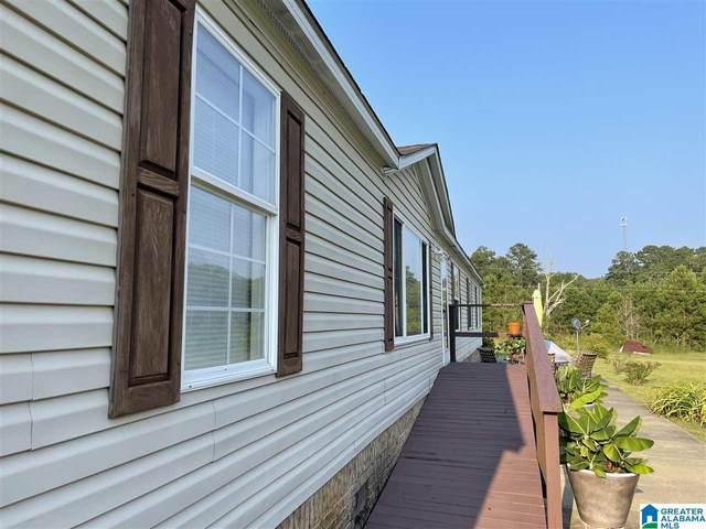 131 Walkers Crossing Road, Pell City, AL 35128 (MLS #1294439) :: Lux Home Group