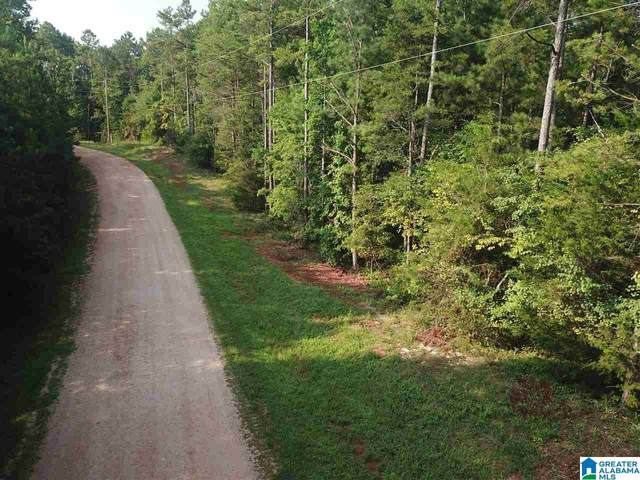 0 Pointe South Drive 30 And 31, Lineville, AL 36266 (MLS #1294520) :: Kellie Drozdowicz Group