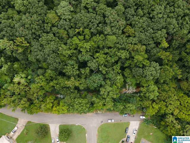 1471 Marlin Springs Road #0, Birmingham, AL 35215 (MLS #1294858) :: The Fred Smith Group | RealtySouth