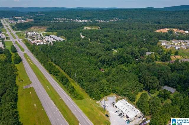 15692 Highway 280, Chelsea, AL 35043 (MLS #1295024) :: JWRE Powered by JPAR Coast & County