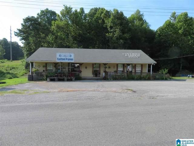 20648 Highway 11, Woodstock, AL 35188 (MLS #1295113) :: Howard Whatley
