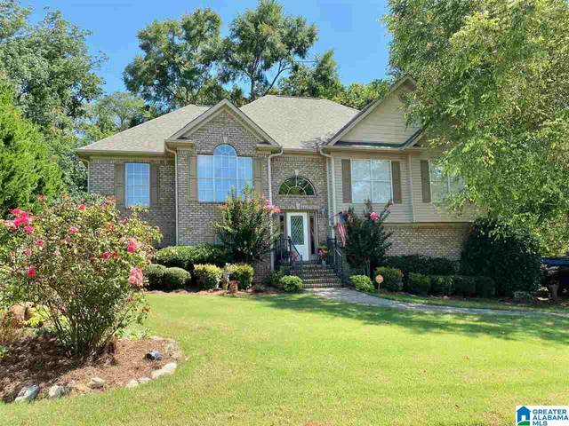 160 Chinaberry Lane, Maylene, AL 35114 (MLS #1295509) :: Lux Home Group