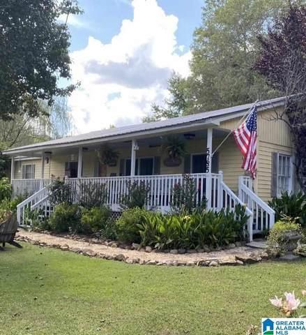 5785 Highway 11, Springville, AL 35146 (MLS #1295545) :: Lux Home Group