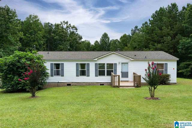 60 Kelly Creek Drive, Odenville, AL 35120 (MLS #1295797) :: Lux Home Group