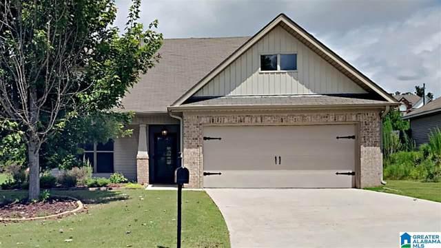 520 Village Springs Lane, Springville, AL 35146 (MLS #1295851) :: Josh Vernon Group