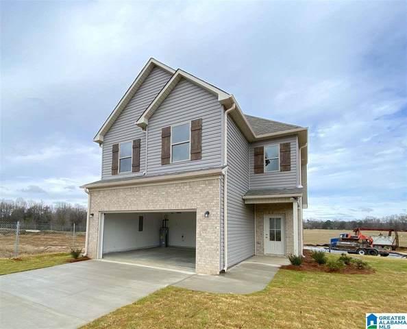 14205 Sugarberry Lane, Tuscaloosa, AL 35405 (MLS #1296035) :: Josh Vernon Group