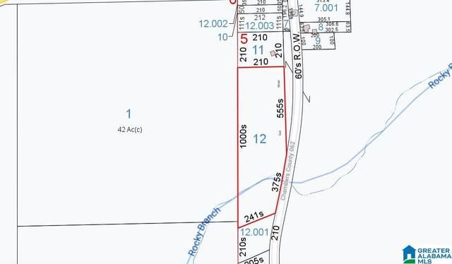 19457 County Road 62 .5, .2, 4.4, Wadley, AL 36276 (MLS #1296255) :: Sargent McDonald Team