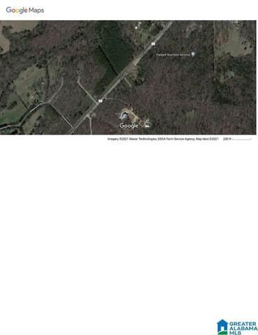 XXXX Spring Creek Road #1008, Montevallo, AL 35115 (MLS #1296401) :: Krch Realty