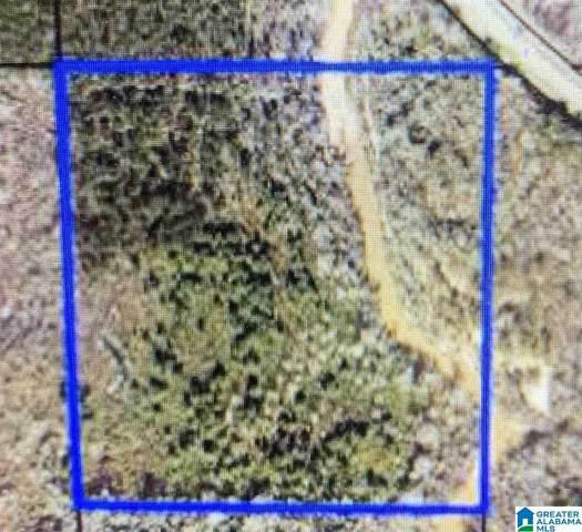 0 Highway 82 #0, Maplesville, AL 36750 (MLS #1296969) :: JWRE Powered by JPAR Coast & County