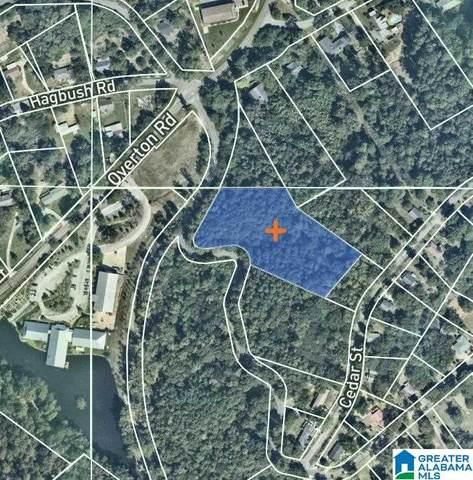 4040 Pine Street 2 Acres, Birmingham, AL 35210 (MLS #1297160) :: Krch Realty