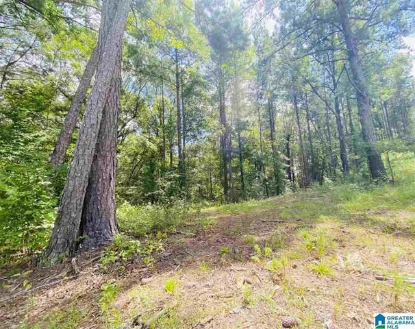 178 Oak Haven Trail #2, Chelsea, AL 35043 (MLS #1297168) :: Josh Vernon Group