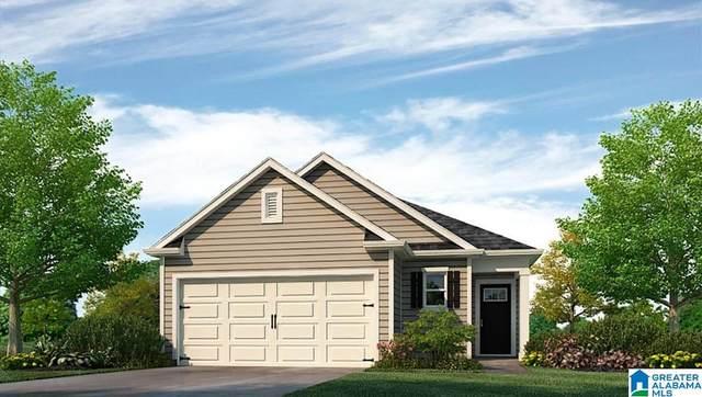 4773 Mountain Gap Drive, Bessemer, AL 35022 (MLS #1297544) :: Lux Home Group