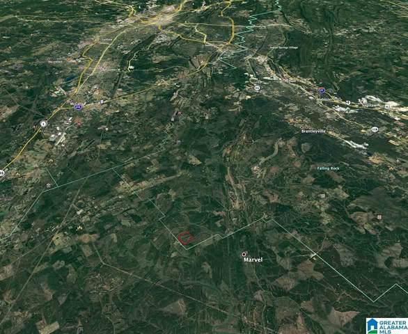 0001 River Road #1, Helena, AL 35080 (MLS #1297695) :: Krch Realty
