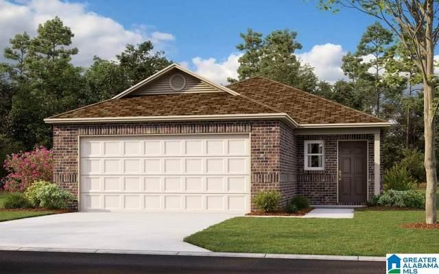 1040 Brookhaven Drive, Odenville, AL 35120 (MLS #1297855) :: Josh Vernon Group
