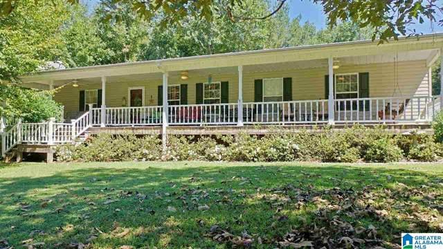 449 Aubra Road, Steele, AL 35987 (MLS #1298053) :: Kellie Drozdowicz Group