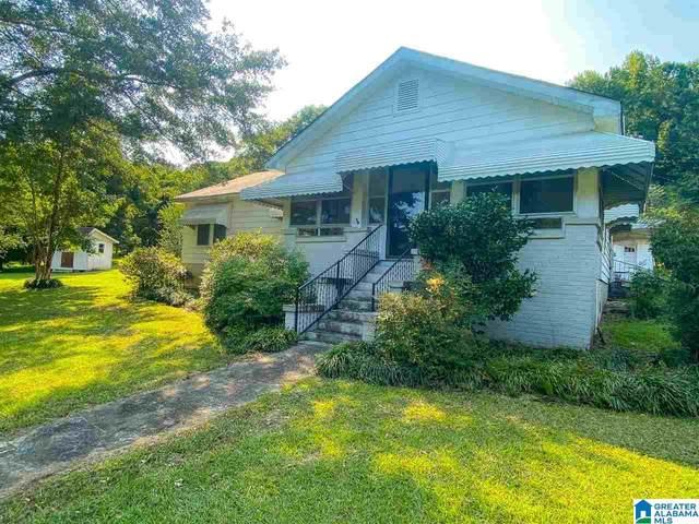 3646 12TH AVENUE N, Pell City, AL 35125 (MLS #1298137) :: Bailey Real Estate Group