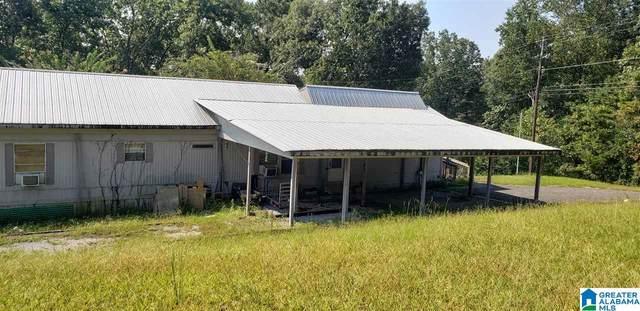 4789 County Road 29, Oneonta, AL 35121 (MLS #1298147) :: Krch Realty