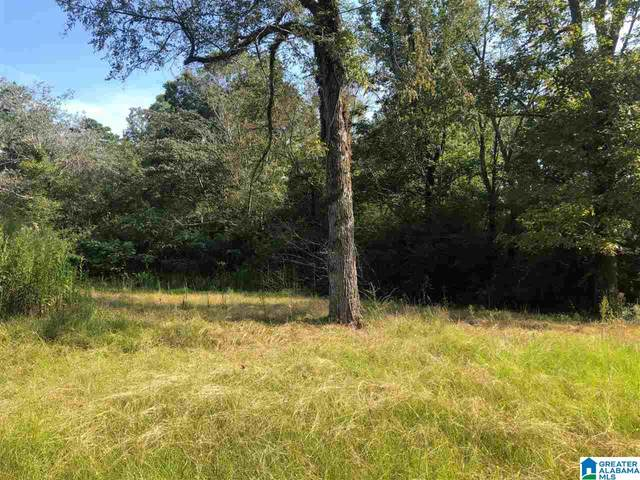 8251 Glendale Farms Road Vacant Land, Trussville, AL 35173 (MLS #1298303) :: Lux Home Group